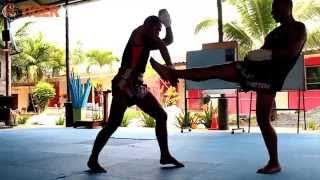 The Traditional Martial Art: Muay Boran Class