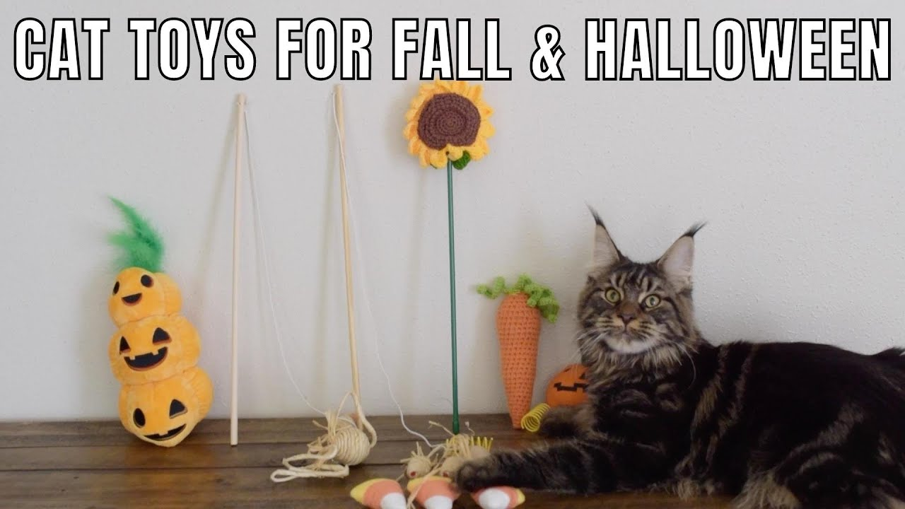 Cat Toys for Fall and Halloween