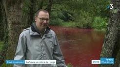 Deux-Sèvres : pourquoi les eaux de la Sèvre Niortaise sont-elles devenues rouges ?