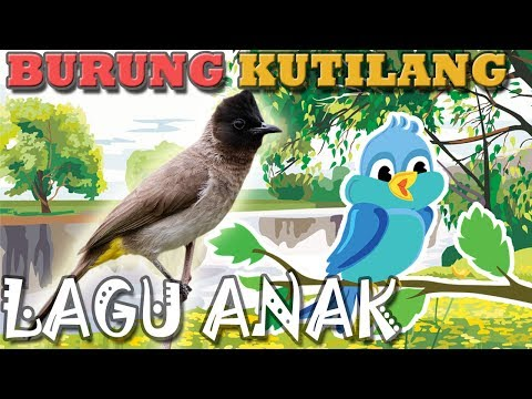 Burung Kutilang Berbunyi Animasi | Lagu Anak Indonesia | Hiburan Anak