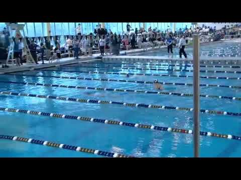 2018 WPIAL Class 2A Boys and Girls Swimming Championships - Day One