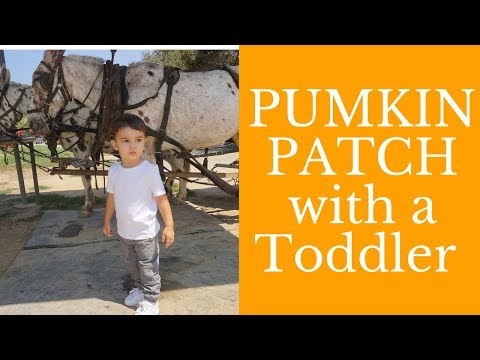 A DAY IN THE LIFE OF A SINGLE MOM | Pumpkin Patch at Underwoods Family Farms