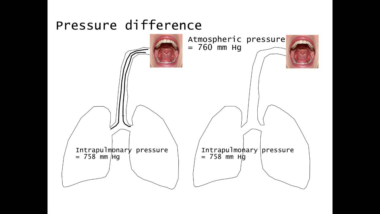 air flow and pressure relationship