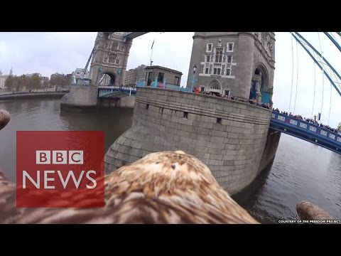 Eagle video reveals stunning views of London from above - BBC News