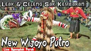 LEAK & Perang Celeng Jaranan New Wijoyo Putro plus atraksi menyantap Ular Live Lapangan Ngemplak