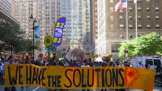 """We Have the Solutions"": Climate Protesters Explain Their Solutions For the Worlds Problems"