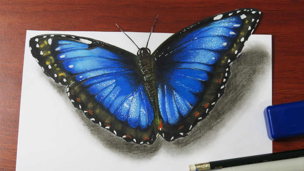 How to draw a realistic butterfly youtube
