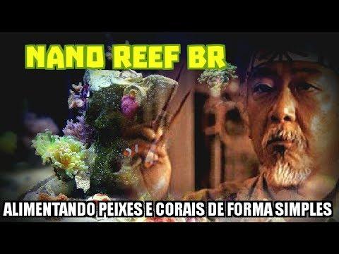 Nano Reef Br - Alimentando Peixes e Corais de Forma Simples