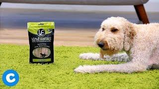 Vital Essentials Dog Food, Treats & Toppers