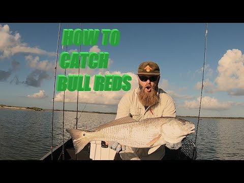 ROCKPORT TEXAS AIR BOAT FISHING TRIP