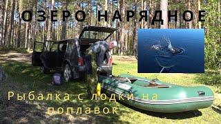 Озеро Нарядное Рыбалка на поплавок с лодки Щука срывает плотву с крючка Fishing from a boat