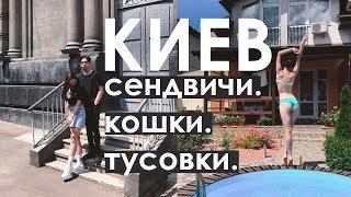 КИЕВ ♥ Куда сходить в Киеве? Сендвичи. Кошки. Тусовки.