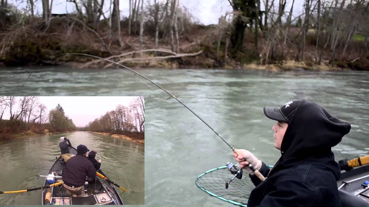 Phil 39 s 36x19 winter steelhead southern oregon fishing for Southern oregon fishing report
