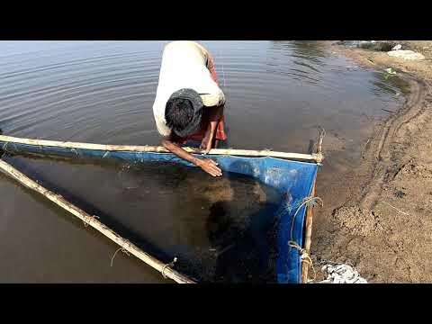 Coal Elevation | কয়লা উত্তোলন । Coal Mine In BD । সুমেশ্বরি নদী,সুসং দুর্গাপুর,নেত্রকোণা