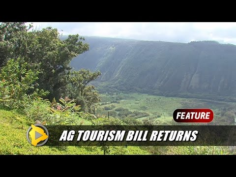 Hawaii Council Takes On Ag Tourism