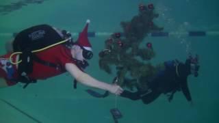 Дайверы из Екатеринбурга установили ёлку под водой