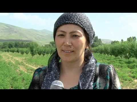 Tajikistan EWA project
