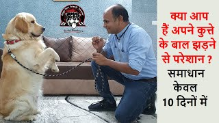Hair fall problem of your Dogs? Solutions in Just 10 Days | Part1 | 2020