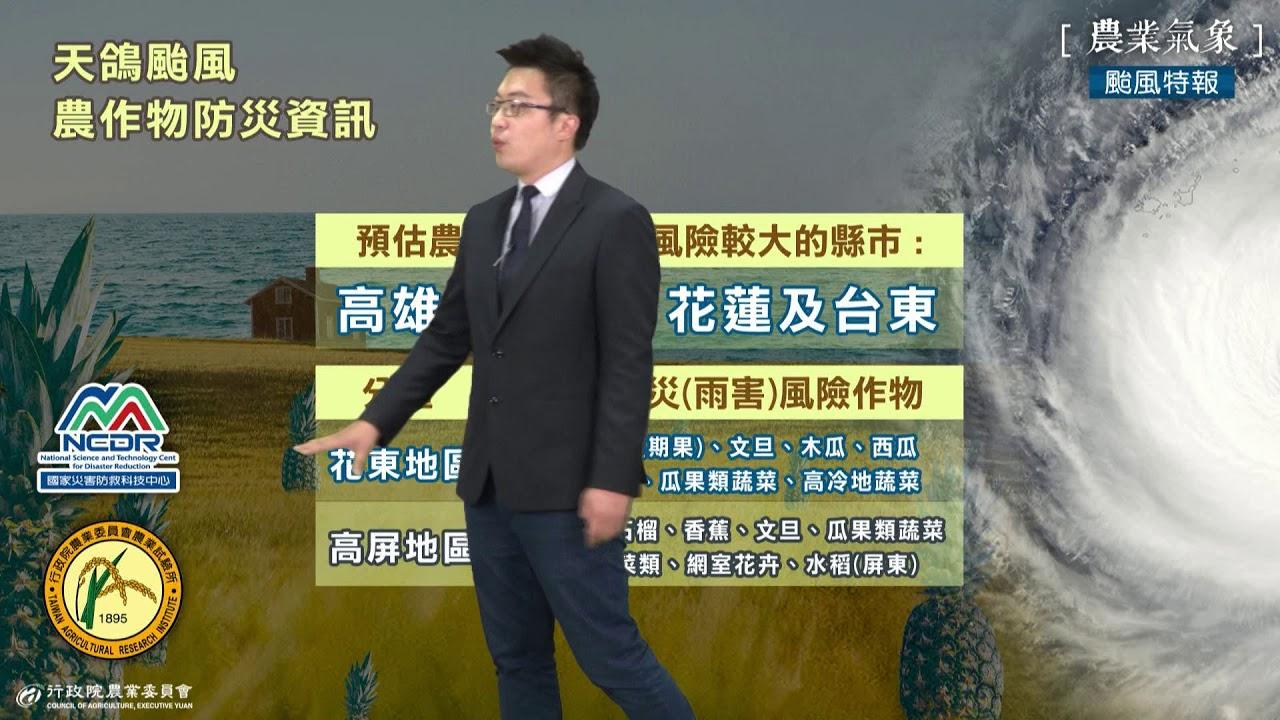 106/08/21 天鴿颱風特報 - YouTube