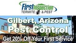Pest Control Gilbert AZ - First Inspection - Termites