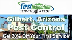 Pest Control Gilbert AZ - First Inspection - Termites