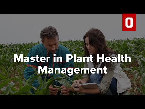 Master In Plant Health Management