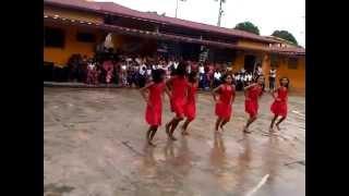 baile yekuana. amazonas