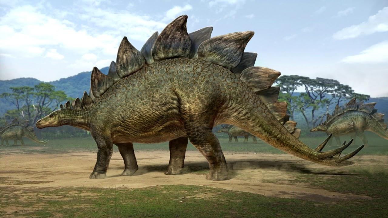 Image result for stegosaurus