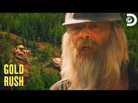 The Beets' Golden Discovery  | Gold Rush
