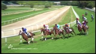 Vidéo de la course PMU PREMIO DIGITALAK (PRIMERA PARTE)