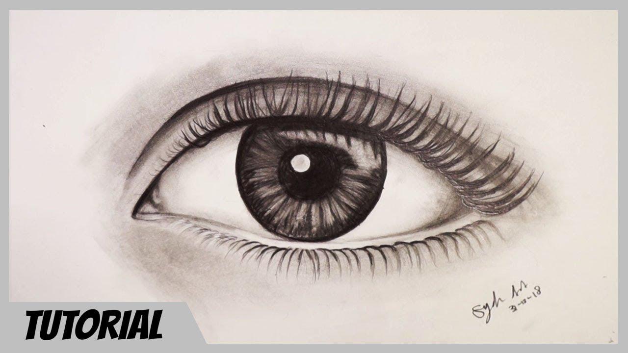 Cara Menggambar Mata Untuk Pemula