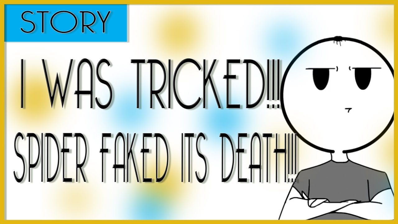 GrayComics: Story - THE SPIDER FAKED ITS OWN DEATH?!!