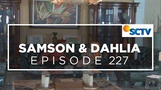 Samson dan Dahlia - Episode 227