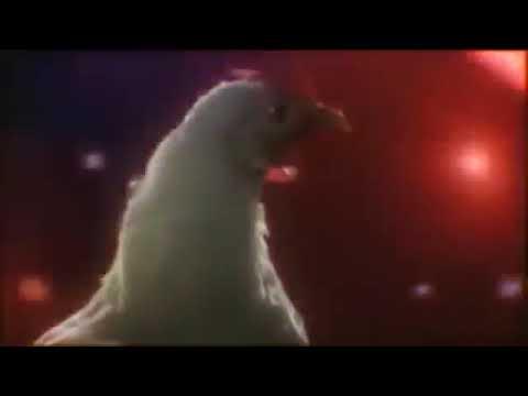 Download çok komik Tavuk Dansı Şarkısı