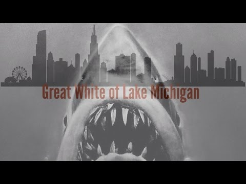 Great White Shark Attack In Lake Michigan - Wadsworth Productions