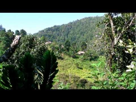 Thailand Hilltribe - The Schoolboy, the Saint, the Guard and the Sick