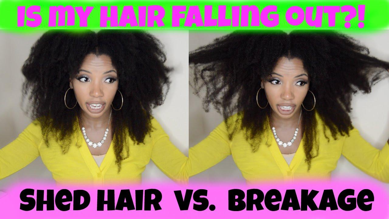 Shedding Hair Vs Breakage How I Manage Youtube