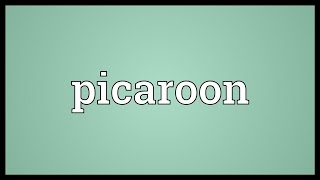 Picaroon Meaning