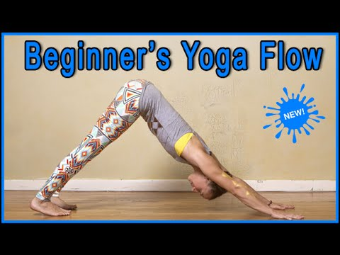Yoga For Beginners Yogalevel 1 Yoga Workout Youtube