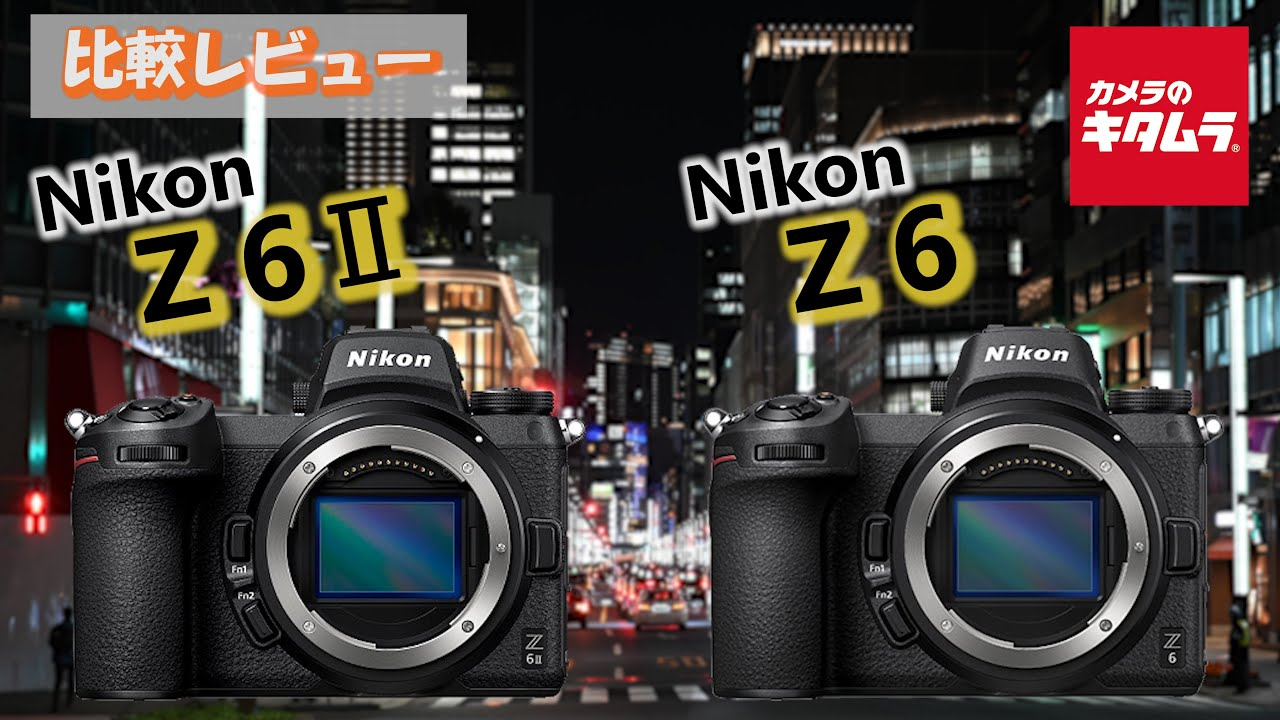 Z6 ニコン ニコン Z6を購入したので野鳥撮影に行ってきました。一眼レフとの違いについて