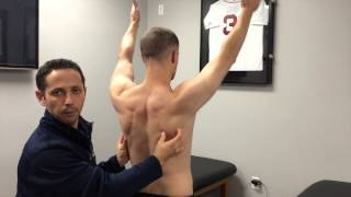 How to Cue the Scapula During Shoulder Exercises