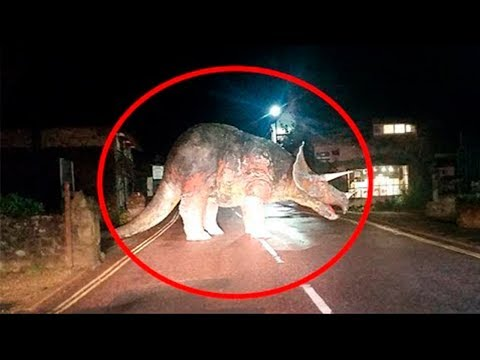 6 Dinosaurios REALES Captados En Cámara