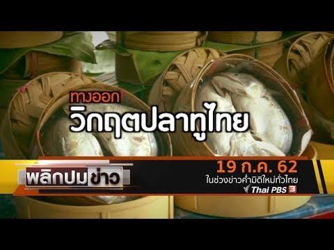 ทางออกวิกฤตปลาทูไทย - วันที่ 19 Jul 2019