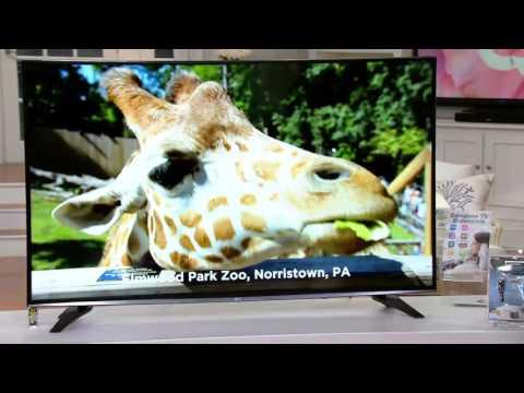 "LG 58"" 4K Ultra High Definition Smart TV w/ App Package on QVC"