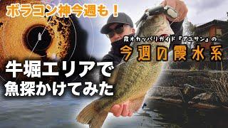 牛堀エリアで魚探かけてみた!『霞オカッパリガイド・アユサンの今週の霞水系』