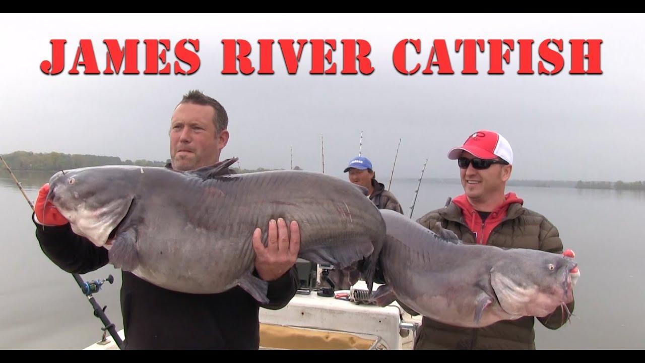 James river catfish fishing youtube for James river fishing report