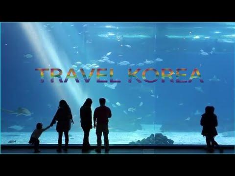 Happy Time in South Korea | Travel Korea Destination | Travel Korean Documentary