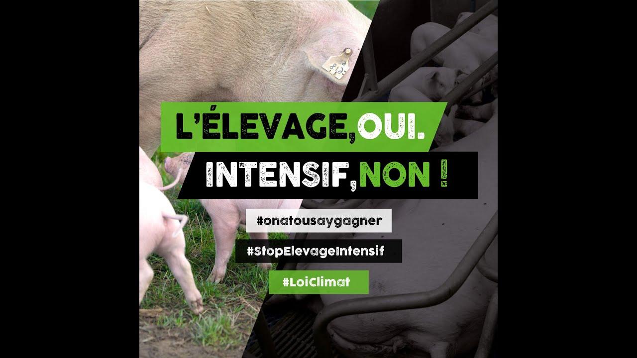 L'élevage oui, intensif non.