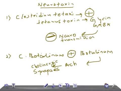 Medical Video Lecture: Neurotoxin producing bacteria, Microbiology