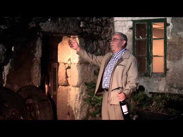 El vino que sabe a fiesta (I)